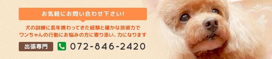家庭犬しつけ訓練キャピラノ・ドッグ・トレーニング お気軽にお問い合わせください!犬の訓練に長年携わってきた経験と確かな技術でワンちゃんの行動にお悩みの方に寄り添い、力になります 出張専門 電話番号072-846-2420