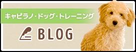 家庭犬しつけ訓練キャピラノ・ドッグ・トレーニング BLOG